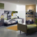 Olive Bedroom Color for Teen with Snowboard