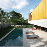 Palm Tree Pool Design Ideas