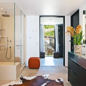 Perfect Wet Room with Cowhide Rugs Ideas