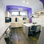 Fisheye Picture Purple Office
