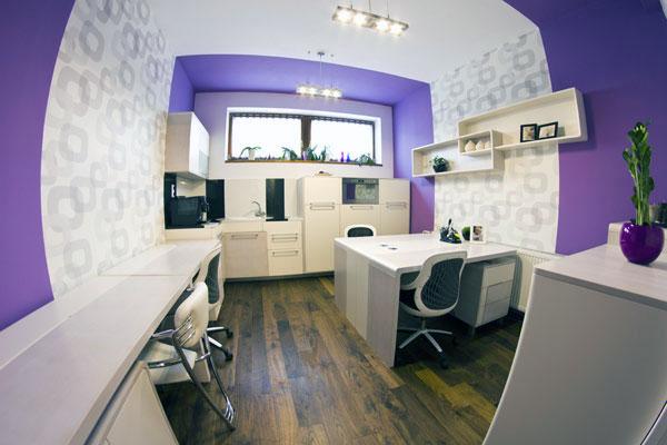 Fisheye Picture Purple Office