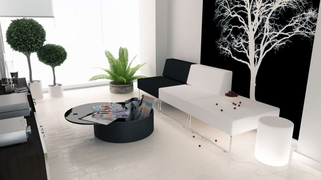 Modern Black White Living Room with Plant