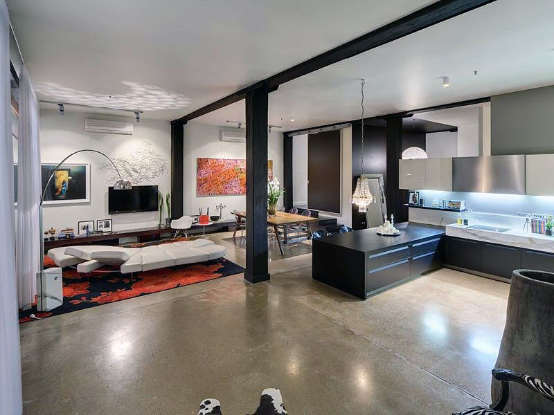 Contemporary apartment design pictures modern open living room