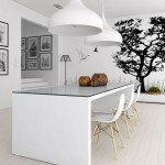 Modern White Dinning Room with Black Wall Accents