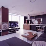 Awesome Black Brown Living Room Apartment