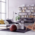 Bright Scandinavian Living Room with Bookshelves Ideas