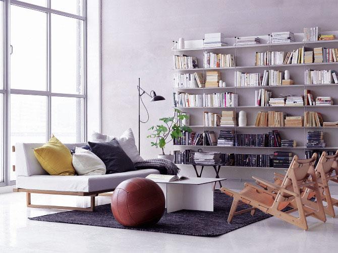Bright Scandinavian Living Room with Bookshelves Ideas