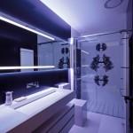 Modern Bathroom Decor with Shower Enclosure Design