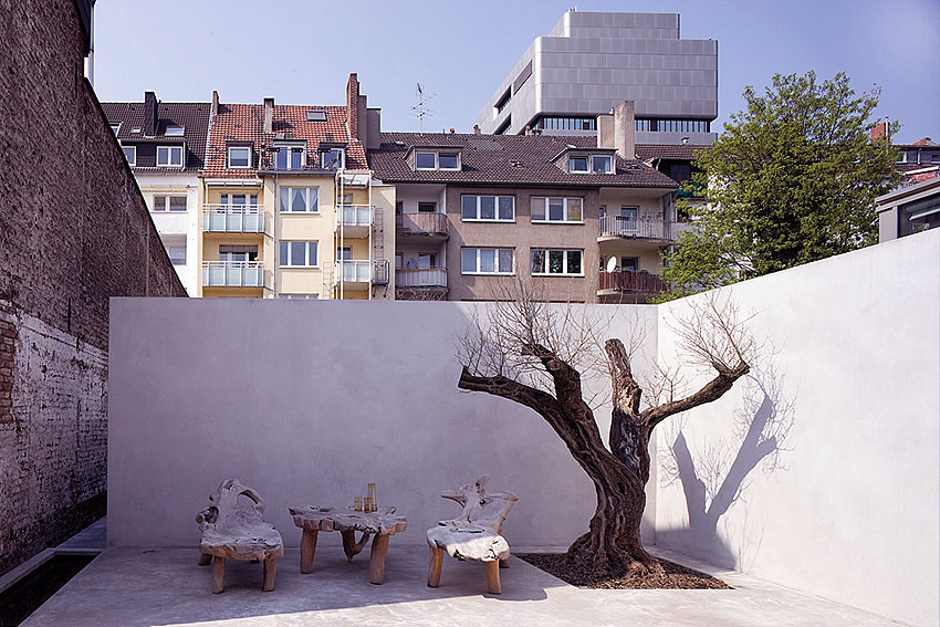 Modern Courtyard with Tropical Root Chair