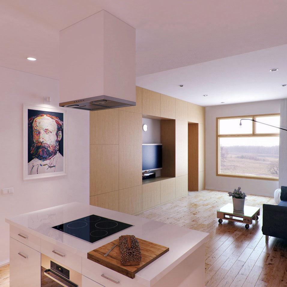 Modern Kitchen Island Living Room Design