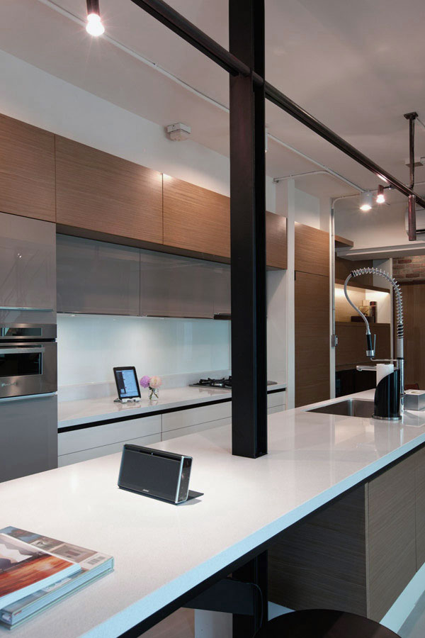 Modern Kitchen with Shiny Furniture