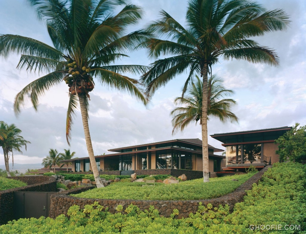 Tropical Garden House with Coconut Trees