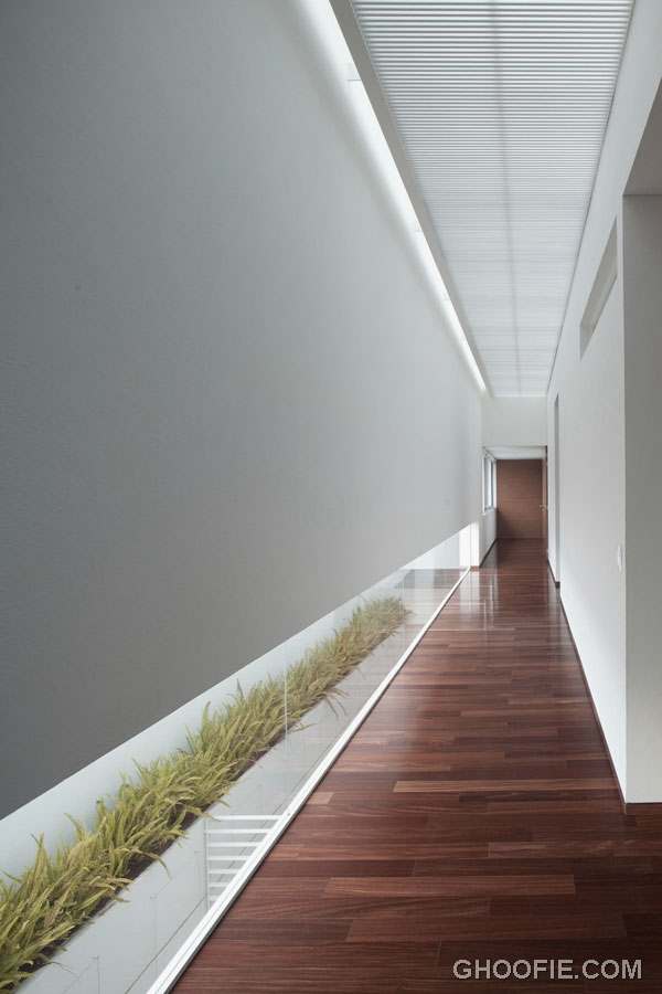 Contemporary Hallway Design Ideas with Planters Decorations