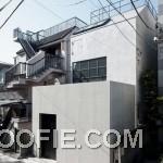 Modern House Design Ideas with Minimalist Concept