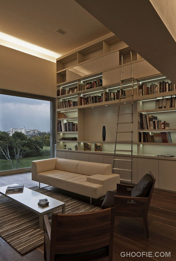 Charming Home Library Design Ideas with Minimalist Ladder