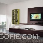 Spacious Living Room with TV Wall Mount Ideas