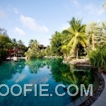 Beautiful Landscape Garden Indigo Pearl Hotel Infinite Pool