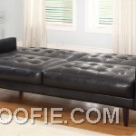 Black Leather Sleeper Sofas