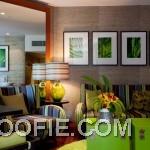 Fancy Living Space Indigo Pearl Hotel Interior Colorful Sofa