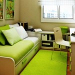 Cool green dorm room with green bed design