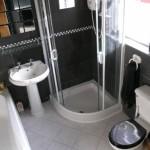 Elegant Modern Minimalist Black & White Bathroom Color Scheme