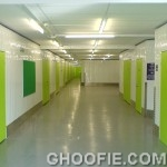 Light Green Reliability Door Design Glossy Interior Design