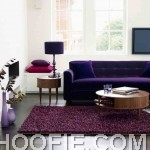 Purple theme living room look beautiful with purple sofas