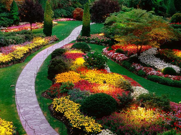 amazing garden with sidewalk path