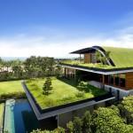 garden on top of house design