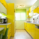 Green natural light kitchen