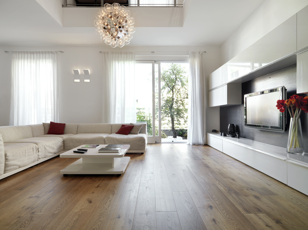 Modern living room with wood floors