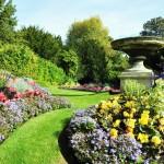 nice garden design with flowers