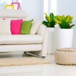 Common Mistakes to Avoid in Interior Designing