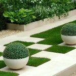 cute-cactus-in-outdoor-garden-interior-for-2013-design-note