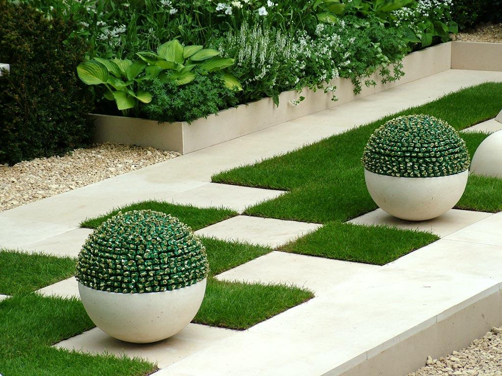 Cute cactus in outdoor garden